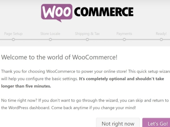 woocommerce1