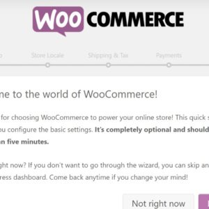 Woo-commerce In WordPress: How to Add and Complete Setup
